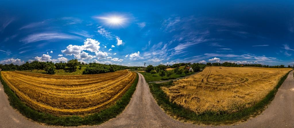 Balatonkeresztúr túraútvonal  Pince irányába.jpg